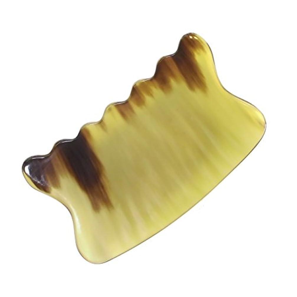 花に水をやる生まれ立場かっさ プレート 希少69 黄水牛角 極美品 曲波型