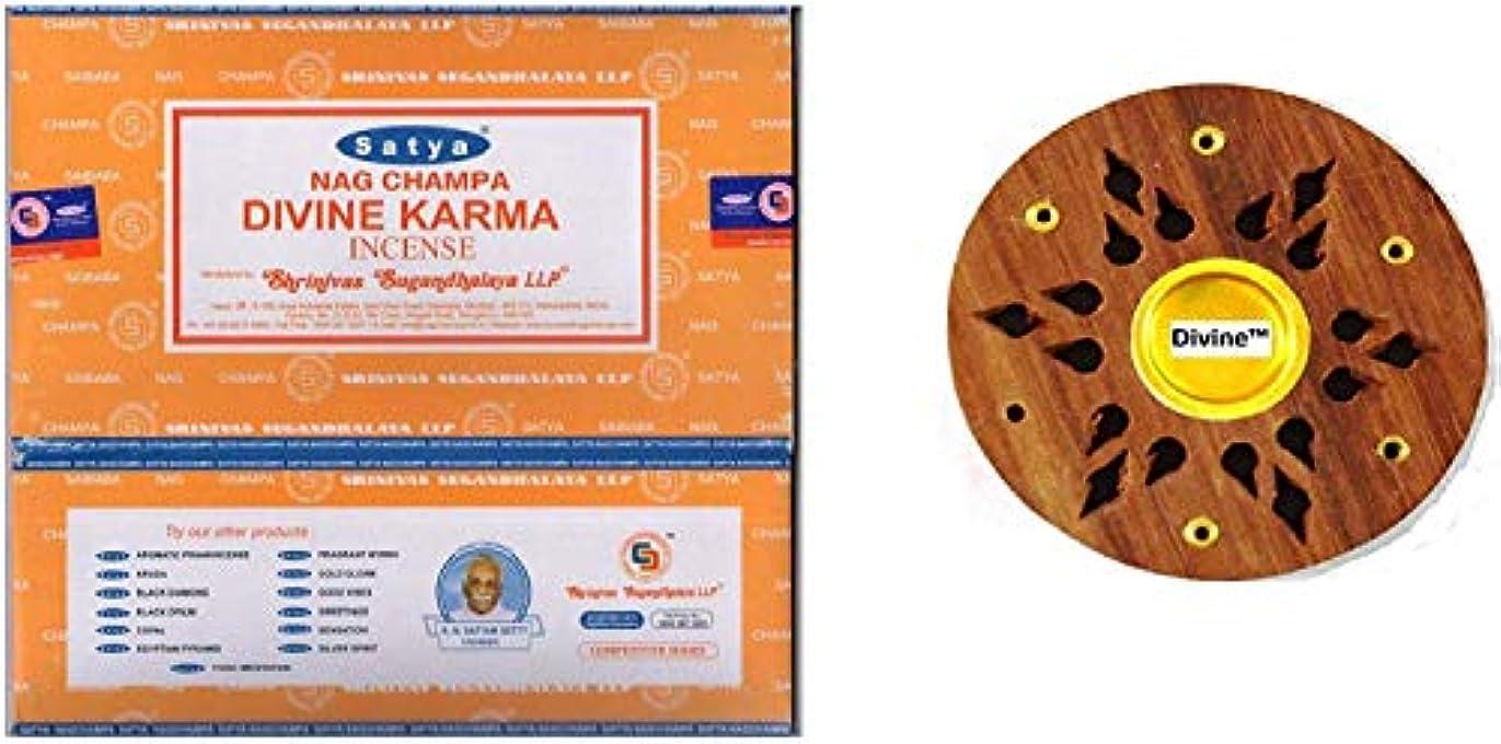 放置海クラスSatya Nag Champa Divine Karma Incense Sticks -12Packs x 15g (180g)