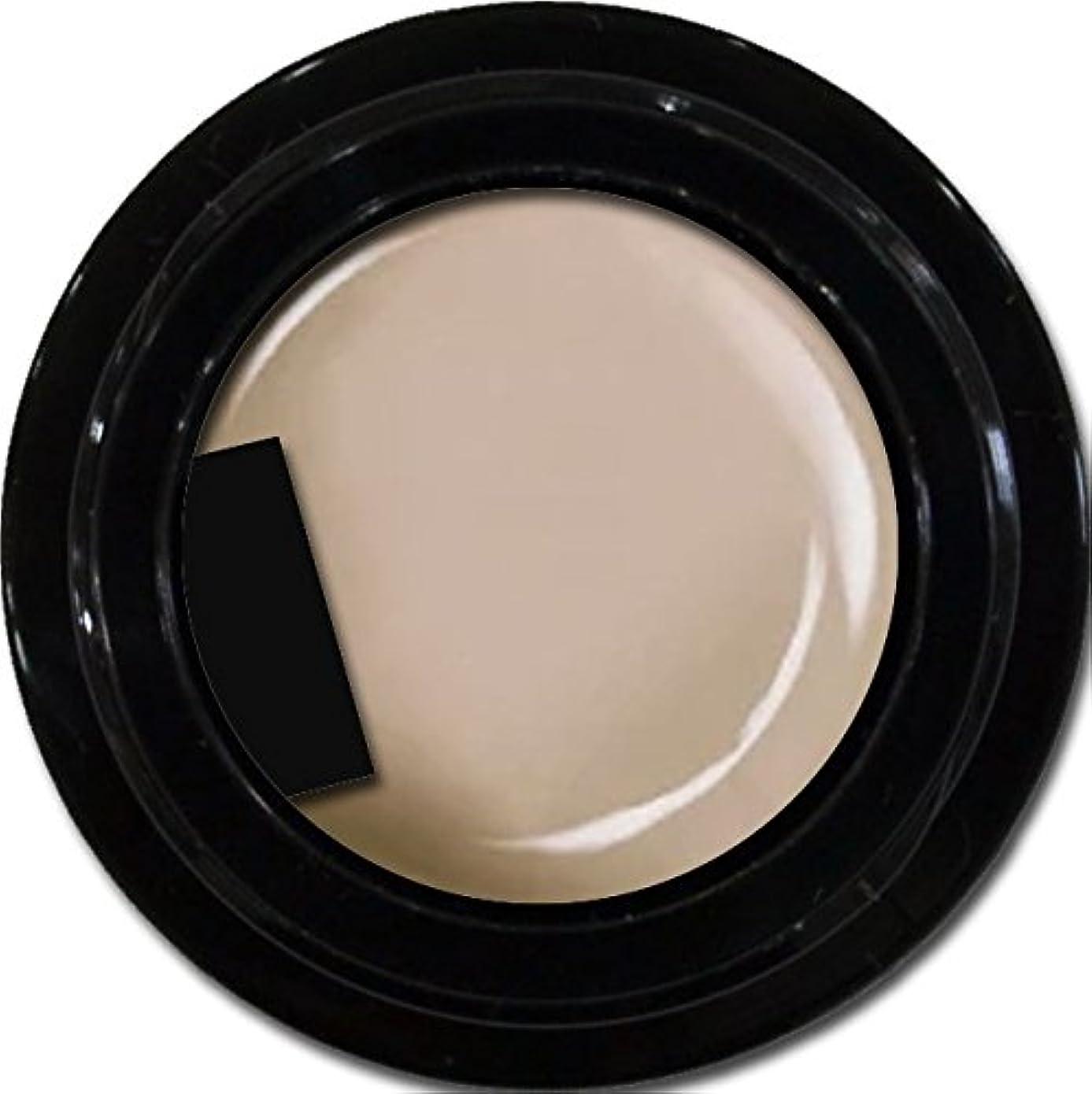 フィット運営メナジェリーカラージェル enchant color gel M718 OakBeige 3g/ マットカラージェル M718 オークベージュ 3グラム