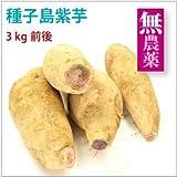 【種子島産紫芋 3kg】鹿児島県産無農薬栽培。【送料込】