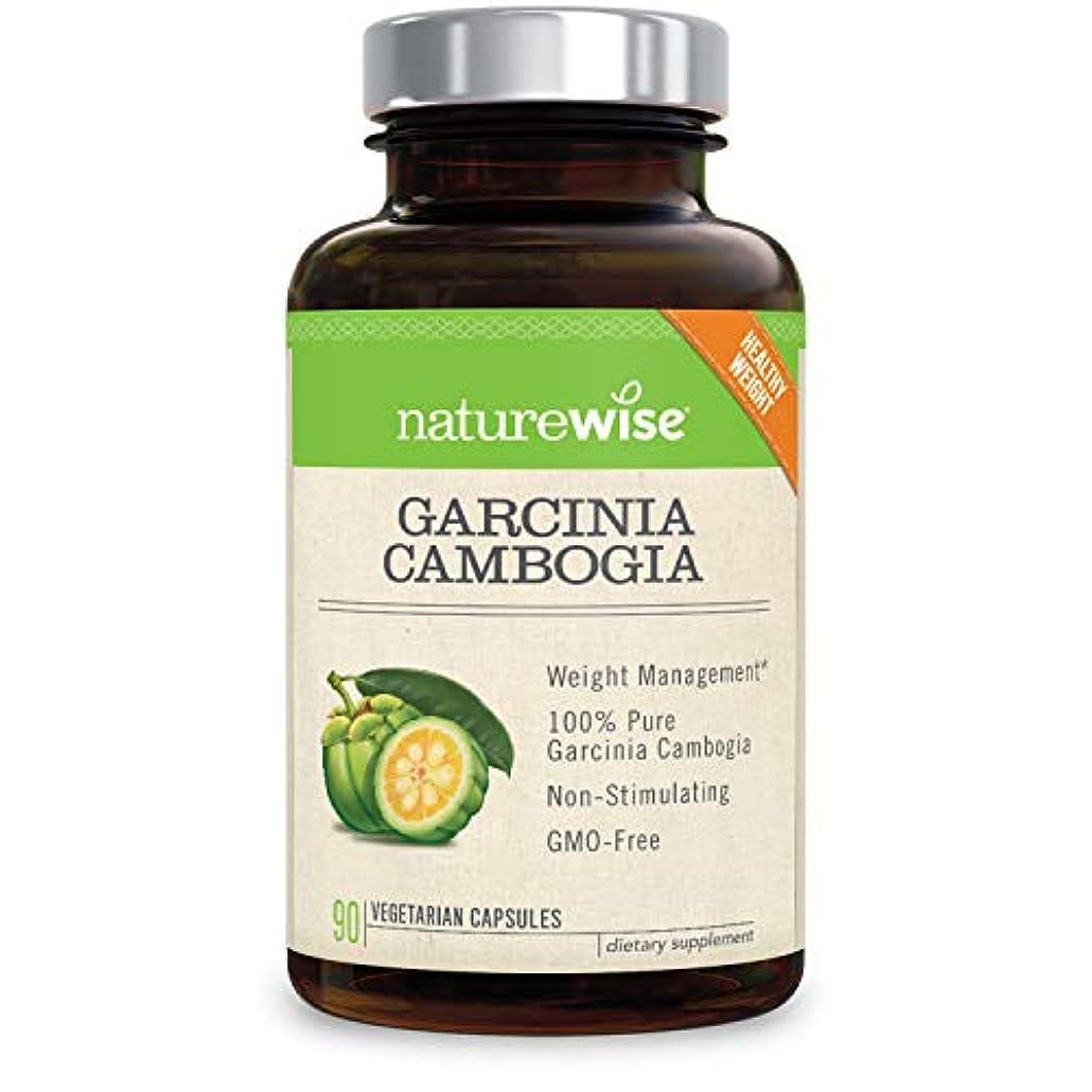 打ち負かす悪質な高音NatureWise Garcinia Cambogia 90 caps.