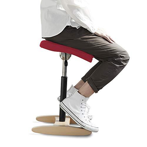 バランスシナジー スクエア 通常 レッド 腰痛対策 姿勢改善 椅子 バランスチェア 大人用