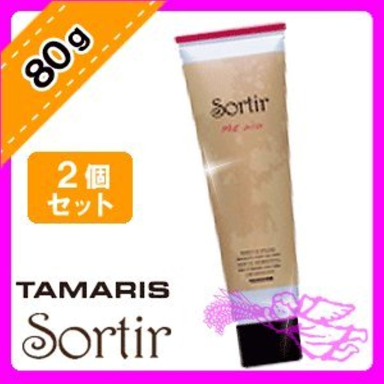 タマリス ソルティール マット ワックス 80g ×2個 TAMARIS Sortir スタイリング ドライな質感でスタイルをしっかりキープ
