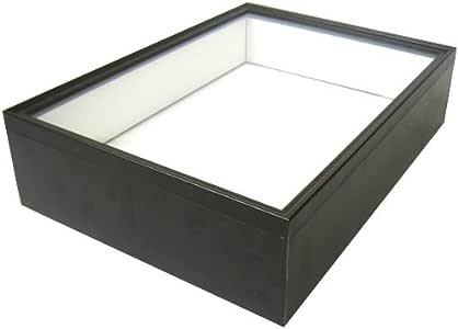 【シーラケース製標本箱】 シーラ箱(標準タイプ)