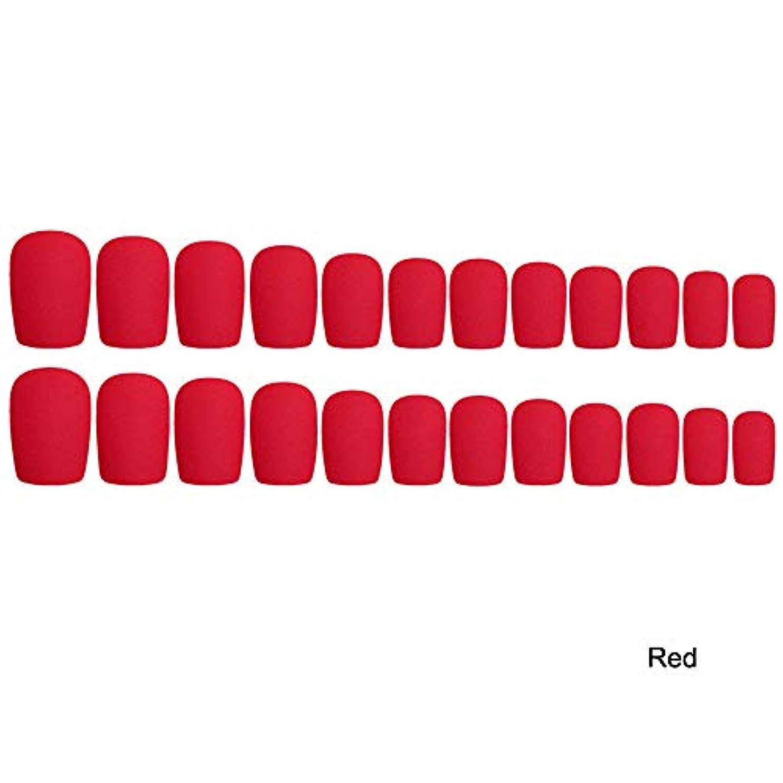 削る誘惑包帯Decdeal 24枚入れ ネイルチップ ネイル 練習用 ネイル用品 偽爪 つけ爪