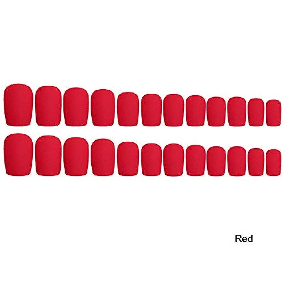 才能のある素子他の場所Decdeal 24枚入れ ネイルチップ ネイル 練習用 ネイル用品 偽爪 つけ爪