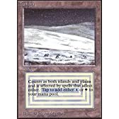 Magic: the Gathering - Tundra - Unlimited