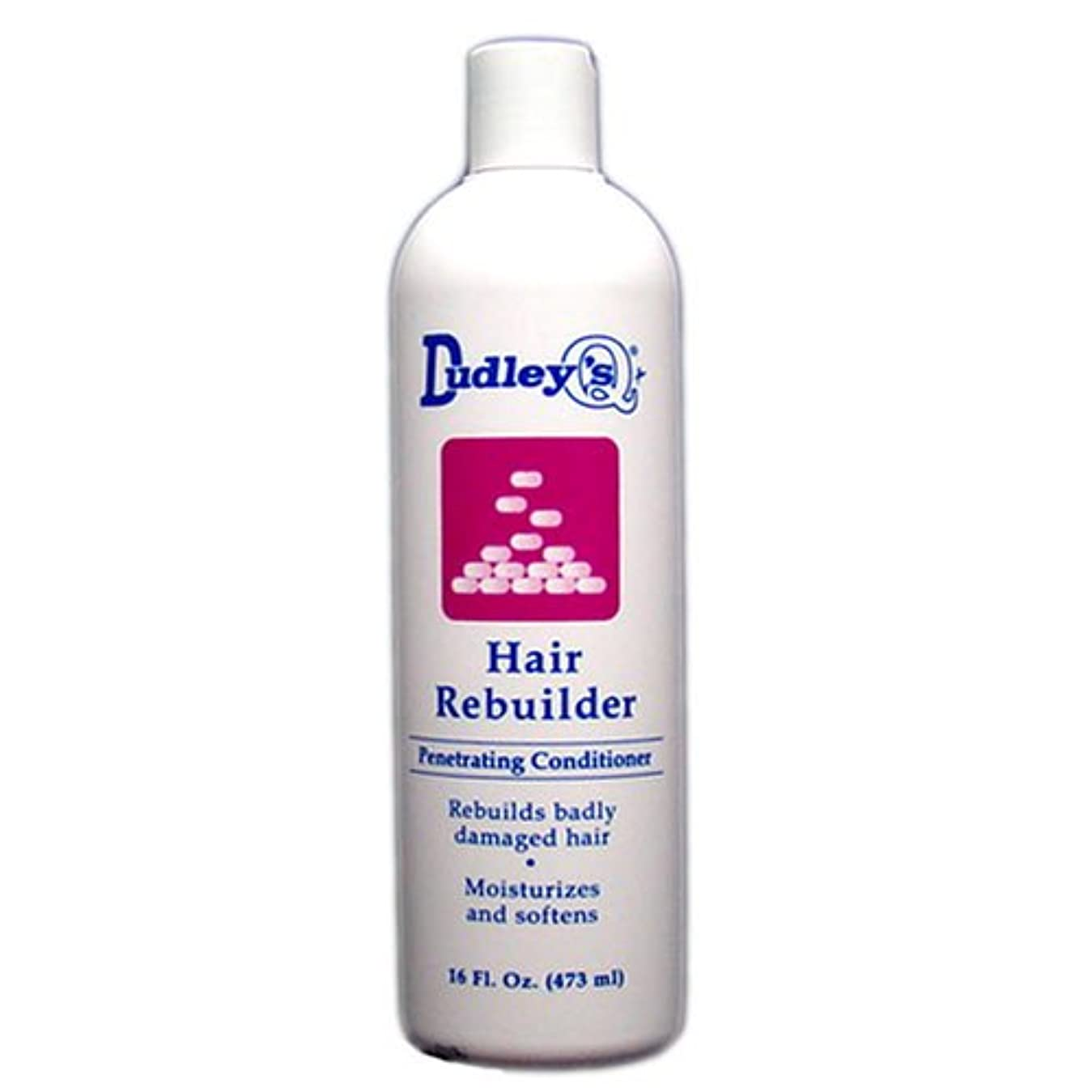 高音ウェブ懐Dudley's 髪の再建浸透性コンディショナー、16オンス 16オンス