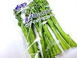 Oishiina Shop 茎ブロッコリー〈クキブロッコリー〉 (※別称:スティックセニョール、足長ブロッコリー) 1ケース 3Kg前後 20束前後