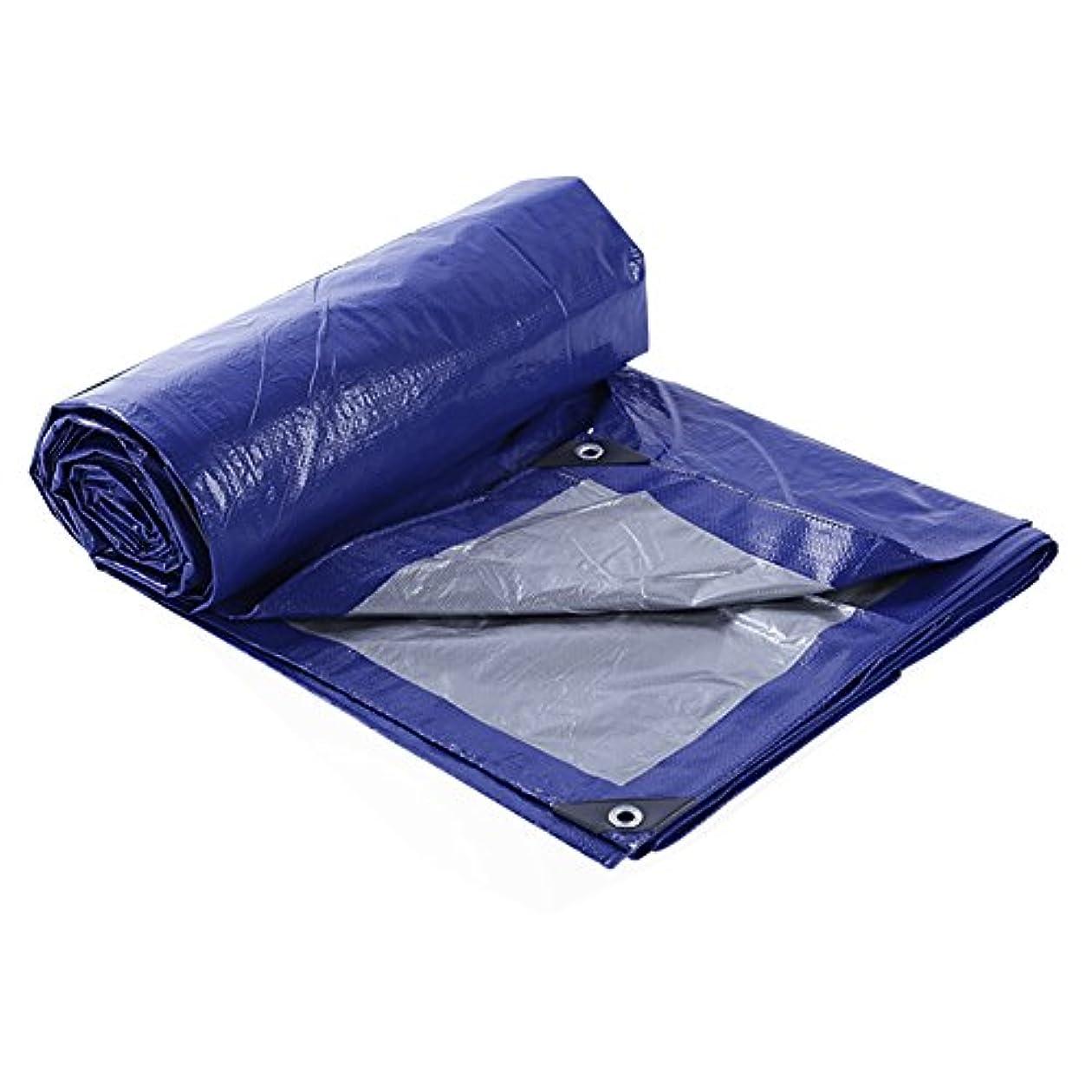 薬用びん父方のZHANWEI ターポリンタープ 防水 シェード アンチUV 軽量 レインプルーフ 布 にとって キャンプ グラウンドテント、 105g /㎡、 カスタマイズ可能なサイズ (色 : 青, サイズ さいず : 2x3M)