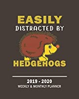 Easily Distracted By Hedgehogs |2019 - 2020 Weekly & Monthly Planner: Weekly Planner(From November 2019 Through December 2020)-Planner Schedule Monthly & Weekly with Notes and To Do Lists (160 Pages| 8x10 Inches)-A Gift For Hedgehog Lovers