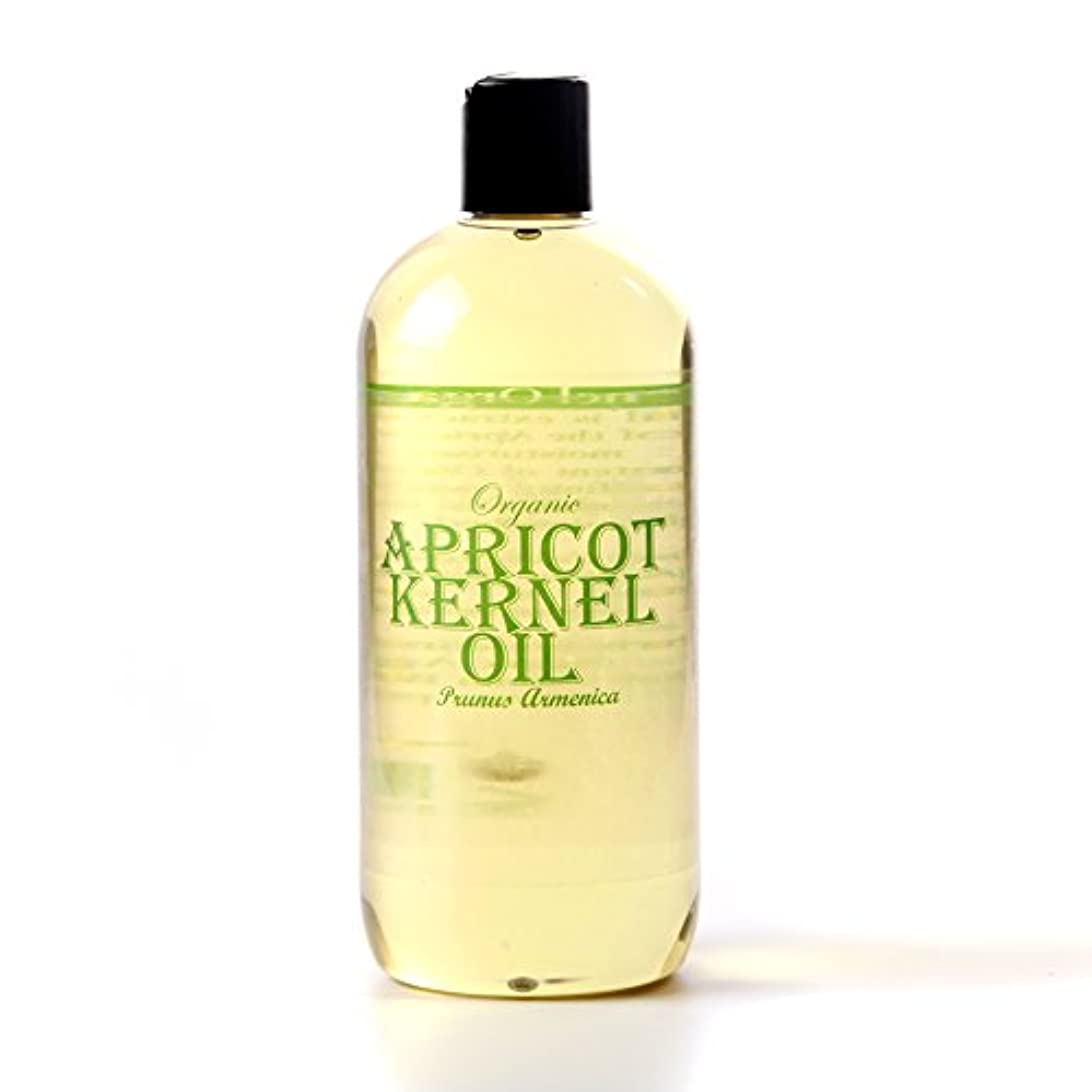 ハントばか引き金Mystic Moments | Apricot Kernel Organic Carrier Oil - 500ml - 100% Pure