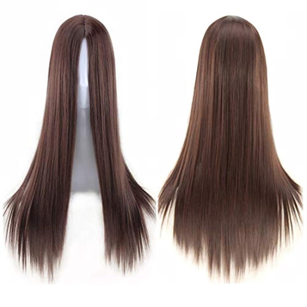 通路ハング何十人もKoloeplf ミドルの前髪のかつら耐熱ウィッグ65 cmのロングストレートウィッグの人々のためのパーティーパフォーマンスカラーウィッグ(マルチカラー) (Color : Navy brown)