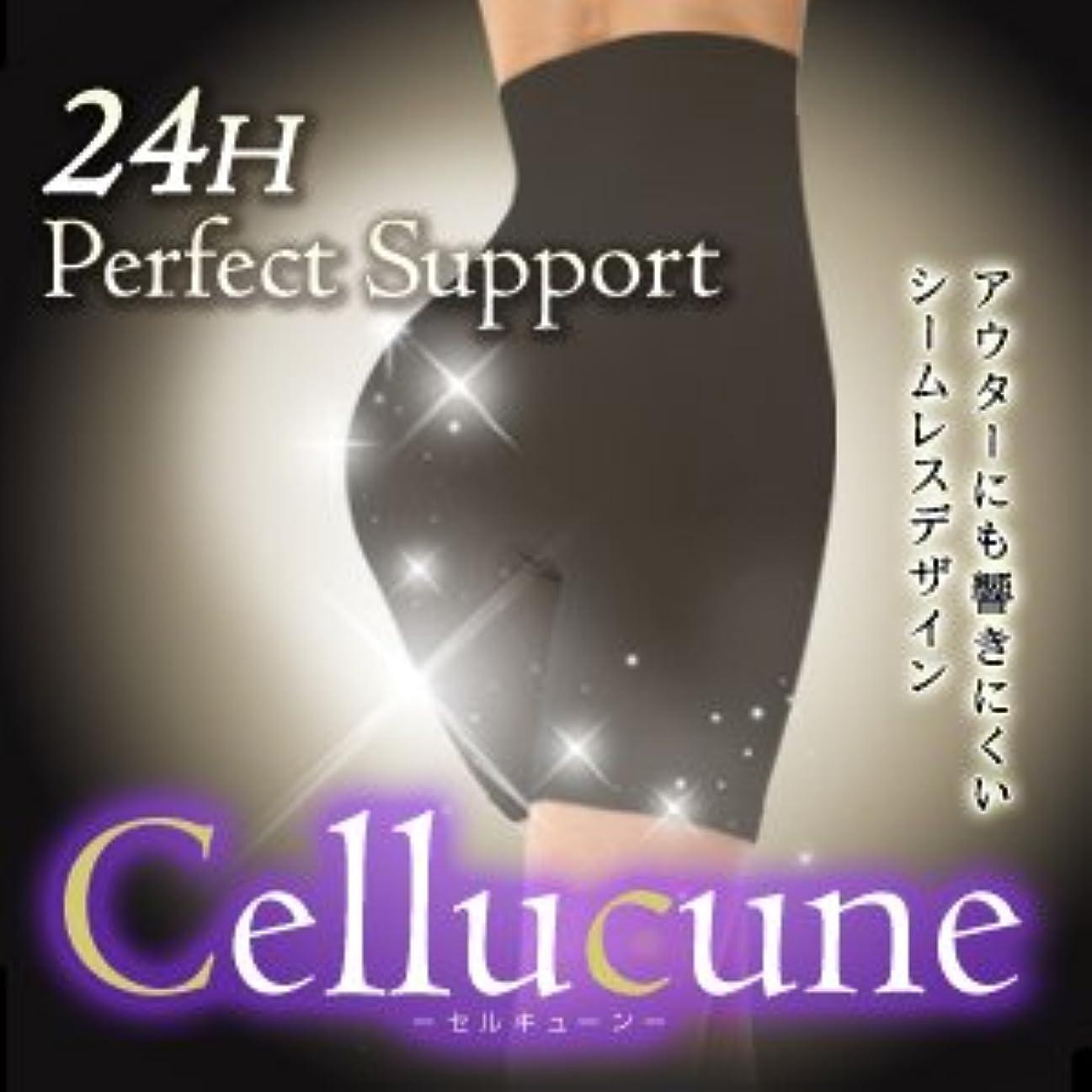 スカイ離れて提供された【M-L】セルキューン -Cellucune- 痩身特化骨盤補正ショーツ