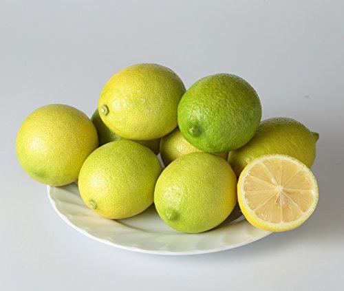 【無農薬・極上品】国産(熊本県産)レモン1Kg(味と香りが良いリスボン系) 有機肥料使用、防腐剤、ワックス等不使用、大手百貨店採用実績あり