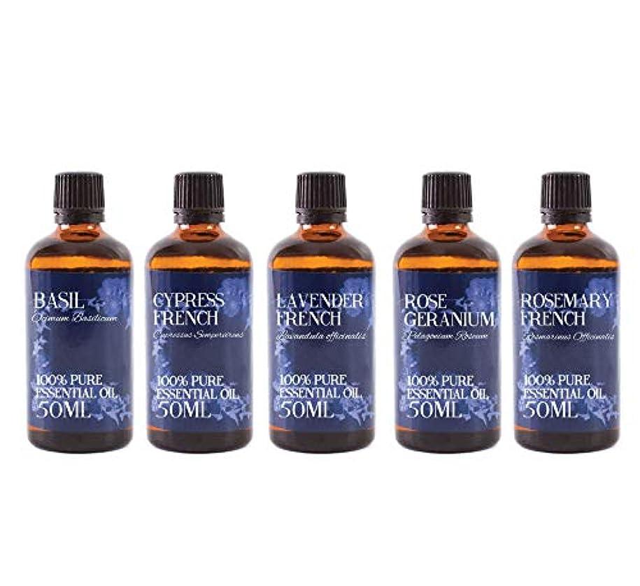 省略するコンテスト電気的Mystic Moments | Gift Starter Pack of 5 x 50ml - Essential Oils Of France