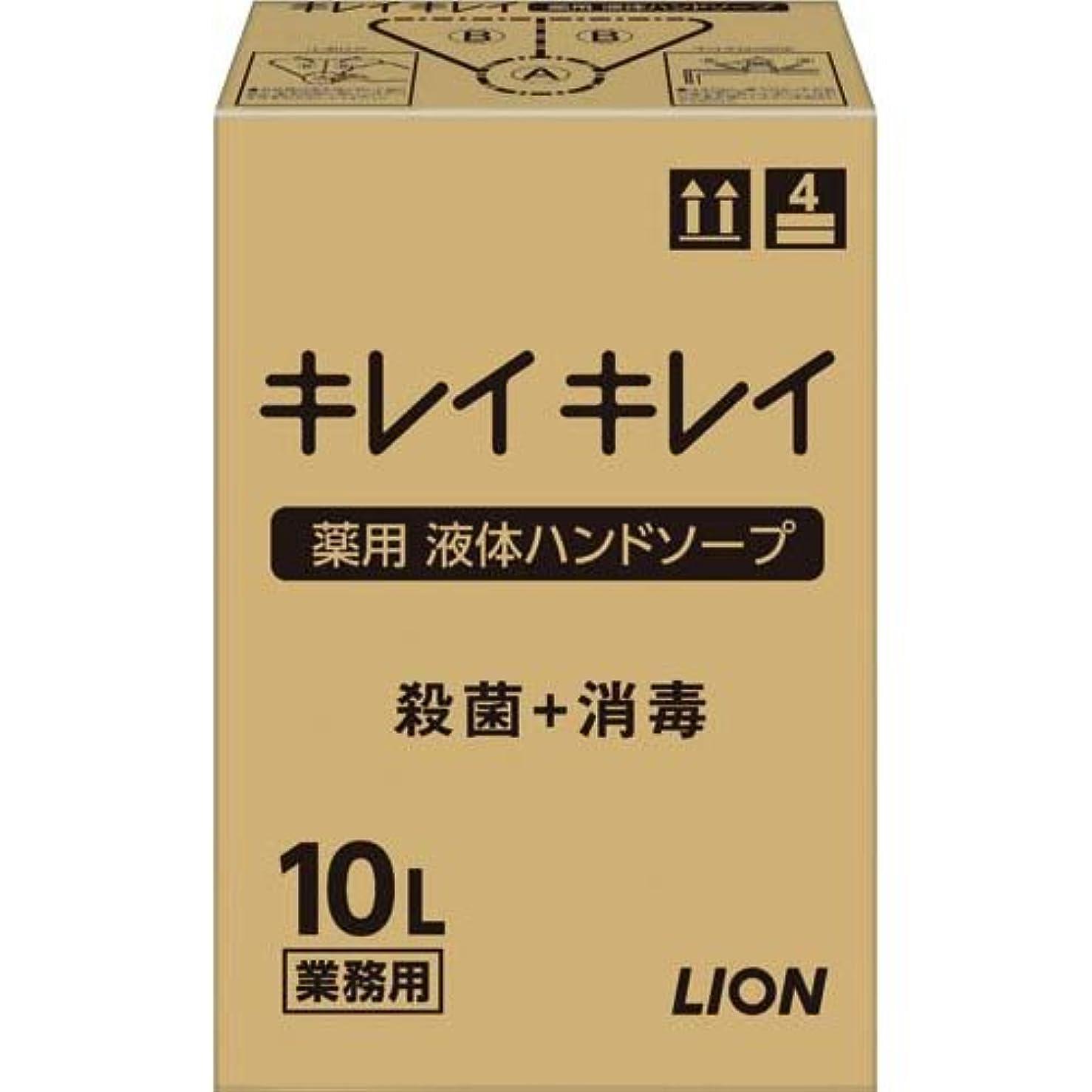 不適当の前でハシーキレイキレイ 薬用ハンドソープ 10L