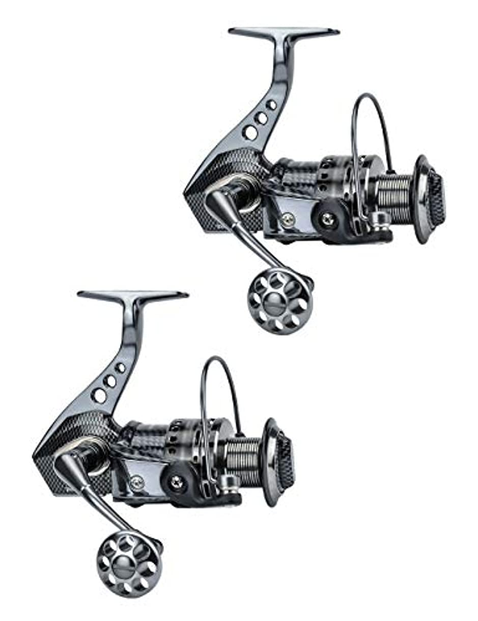 望まない牧草地航空釣り用具、回転リール、豊富なセレクション、14個の耐久性のあるステンレススチールベアリング、落下防止、さび止めデザイン、オールメタルハイパワーボディ (Color : Two reel)