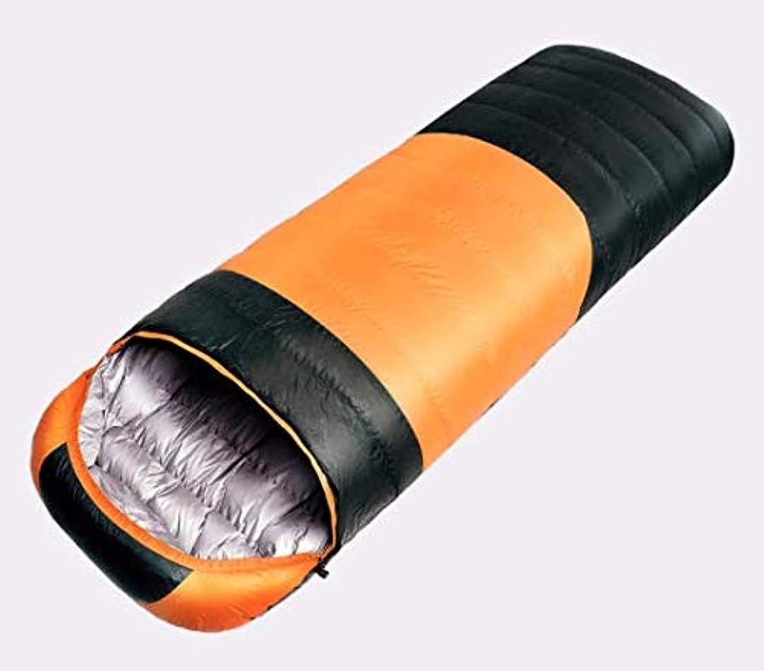 苦しむ抽選甘いLYgMV 寝袋ダウン(800g、1000g、1200g)秋と冬のアヒルの大人の寝袋