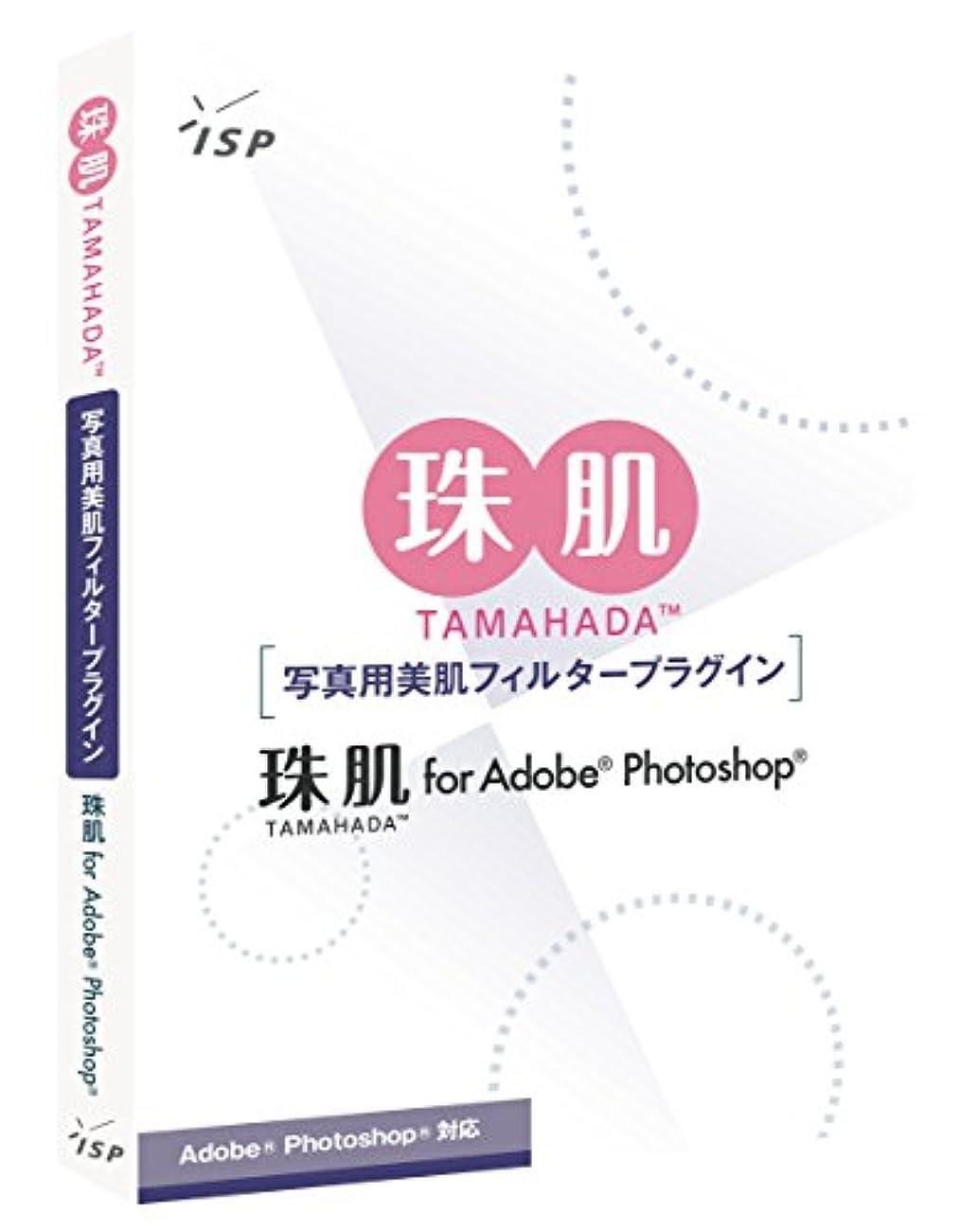 傷つける列挙する放棄する珠肌 for Adobe Photoshop