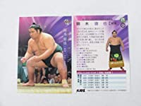 BBM2019 大相撲■レギュラーカード■15/錦木 徹也/前頭
