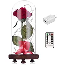 Beauty and The Beast Red Rose kit Enchanted and Led Light with Fallen Petals in Glass Dome on Wooden Base Gift for Valentine's Day Christmas Home Decor Party Wedding Anniversary