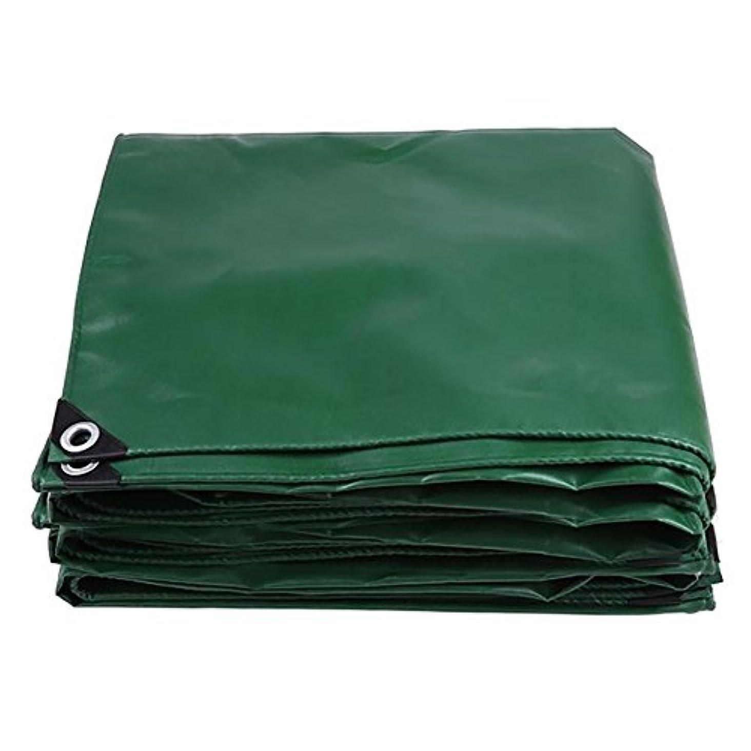 スペア値世界に死んだWCH アイレット550g /㎡が付いている防水頑丈で緑の厚いRainproof日焼け止めの防水シートシート
