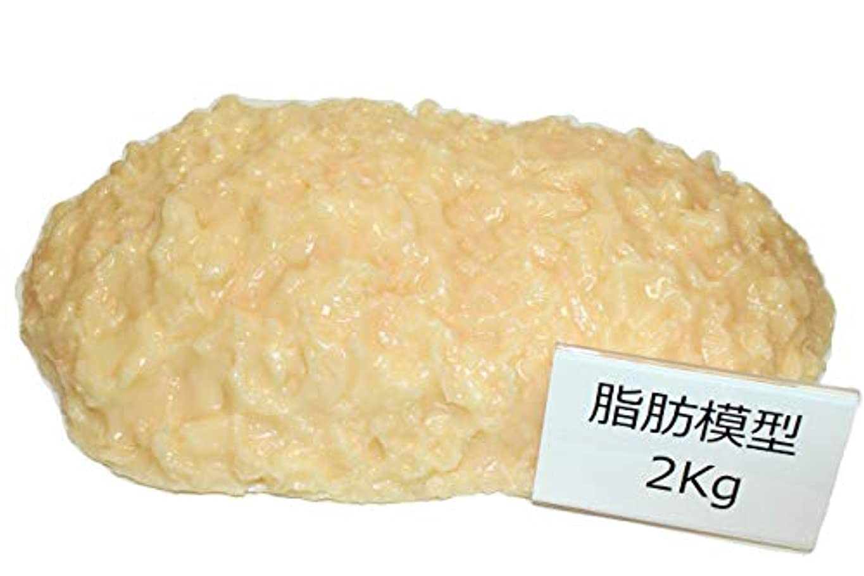 そして代わってピストン脂肪サンプル 脂肪模型 2kg 食品サンプル 実物重量 ダイエット トレーニング フードモデル