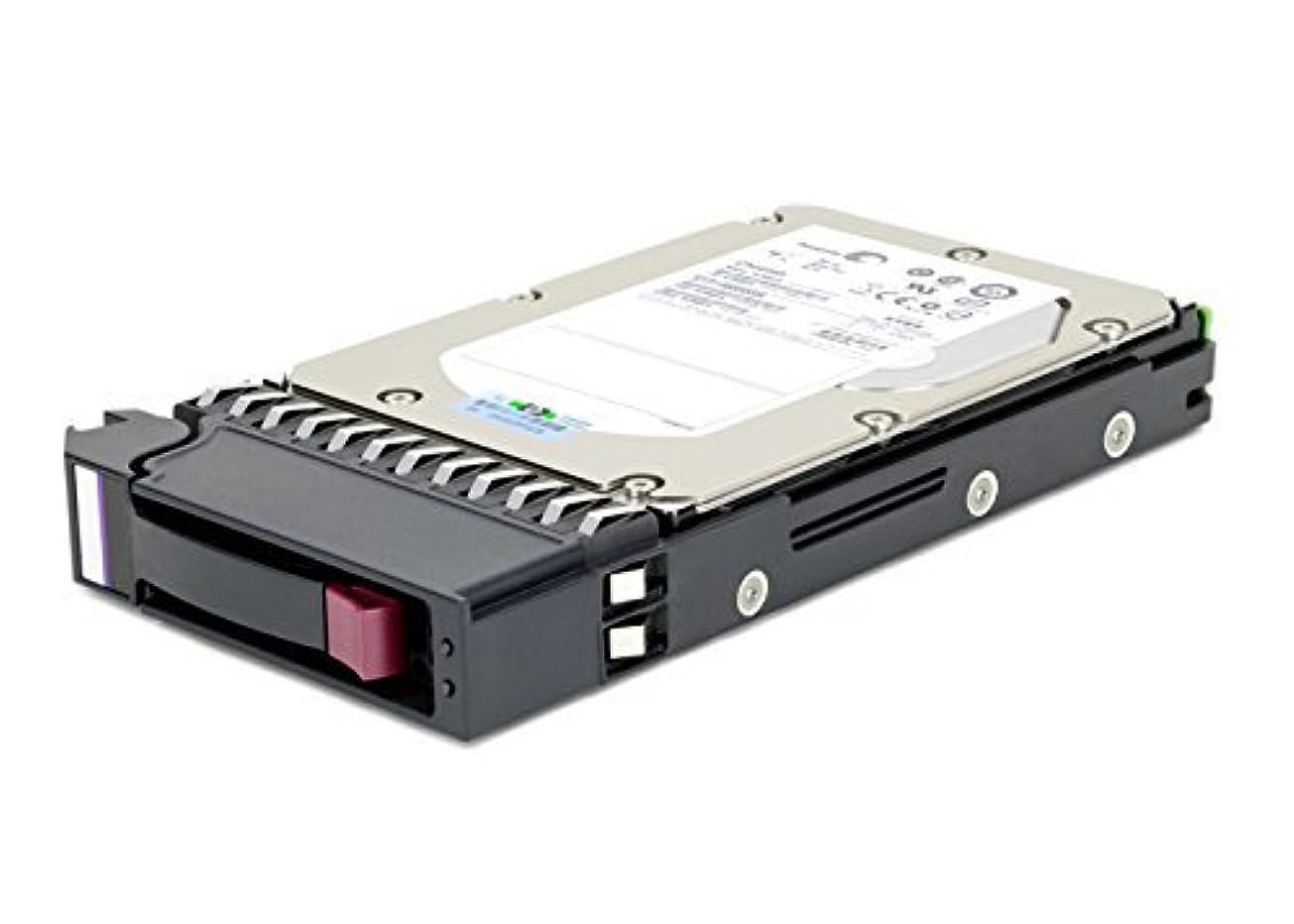 改善俳句90Y8879 IBM 300-GB 10K 6G 2.5 SAS G2HS HDD [10パック] (更新)