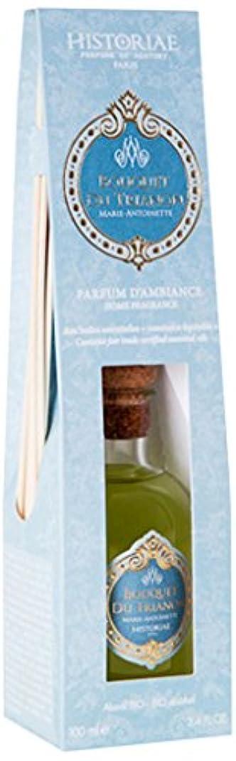 繊毛競争力のある木製魅惑の香り ヒストリアリードディフューザーブーケトリアノン