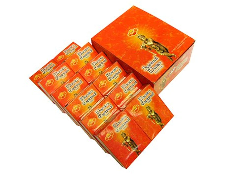 見ました代表する引っ張るSANDESH SAC (サンデッシュ) スピリチュアルマスター香コーンタイプ SPIRITUAL MASTER CORN 12箱セット