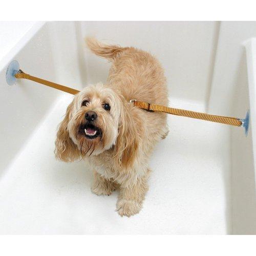 【アメリカで大人気】ペット お風呂用係留ロープ 二本入り 入浴 犬・猫用 リード 固定