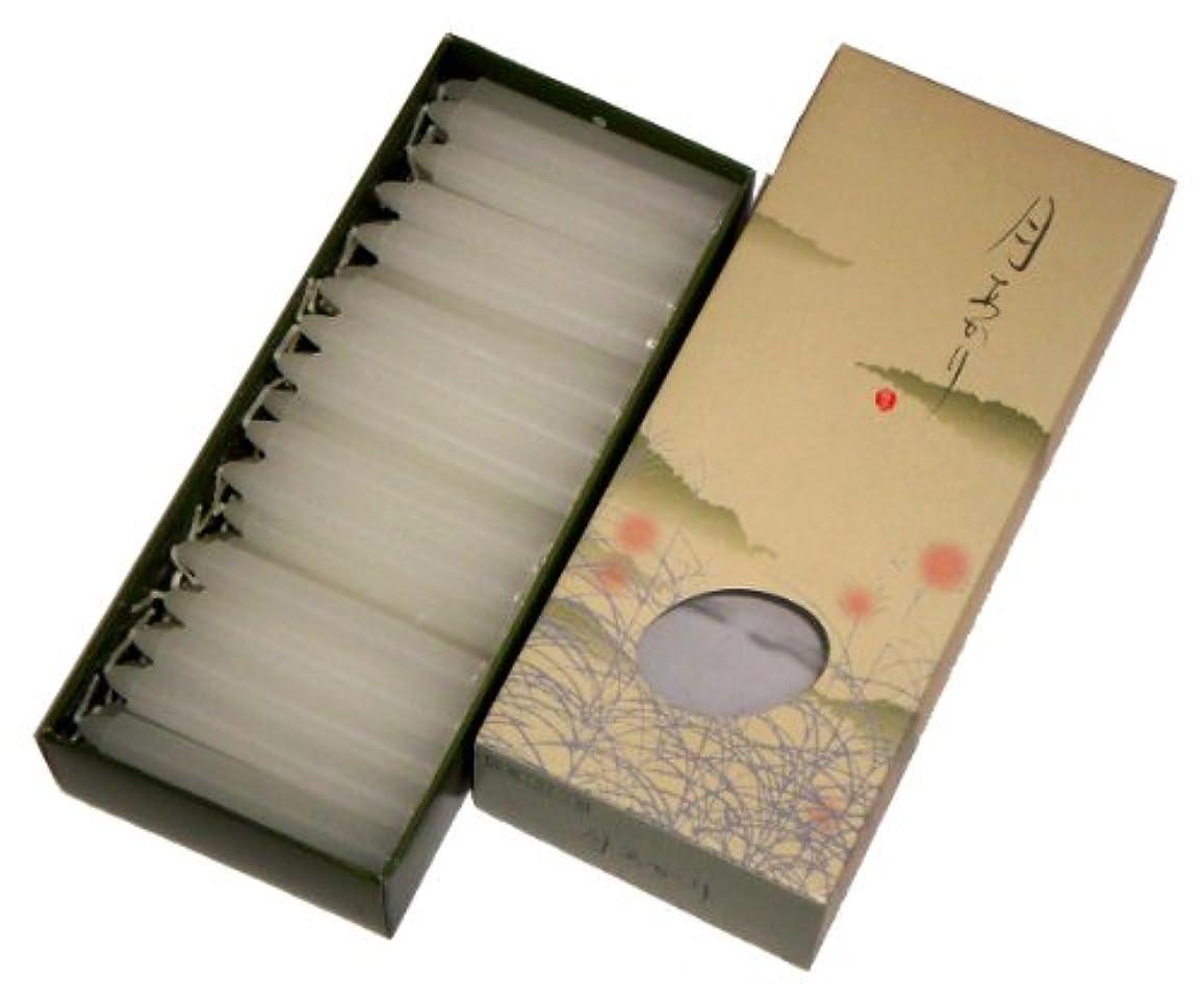 プラス胚芽モール東海製蝋 ローソク 極品 月あかり 太40分 約68本 131-16
