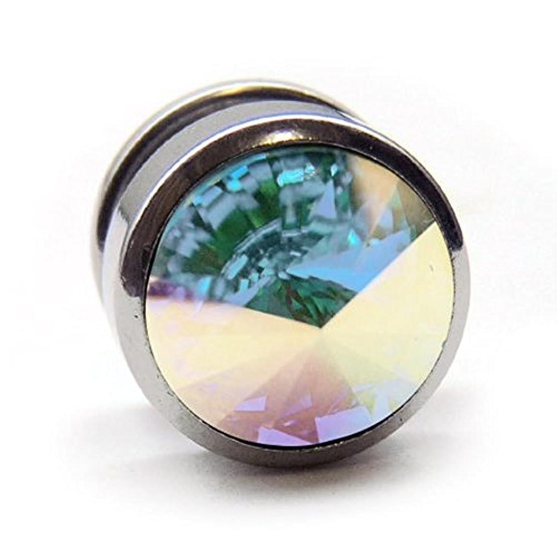 公園宇宙のライフルスワンユニオン swanunion 丸型 片耳 磁石 マグピ ステンレス製 フェイクピアス fp33