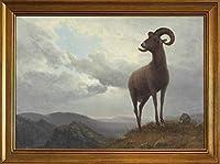 古典フレーム Albert Bierstadt ジクレープリント ジクレープリント キャンバス 印刷 複製画 絵画 ポスター(長い角のある羊) #JK