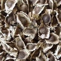 モリンガ 種 分かりやすい栽培方法付き プランター植え可 種まき時期4月~8月 (30g)