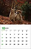 2020カレンダー 日本犬 ([カレンダー]) 画像