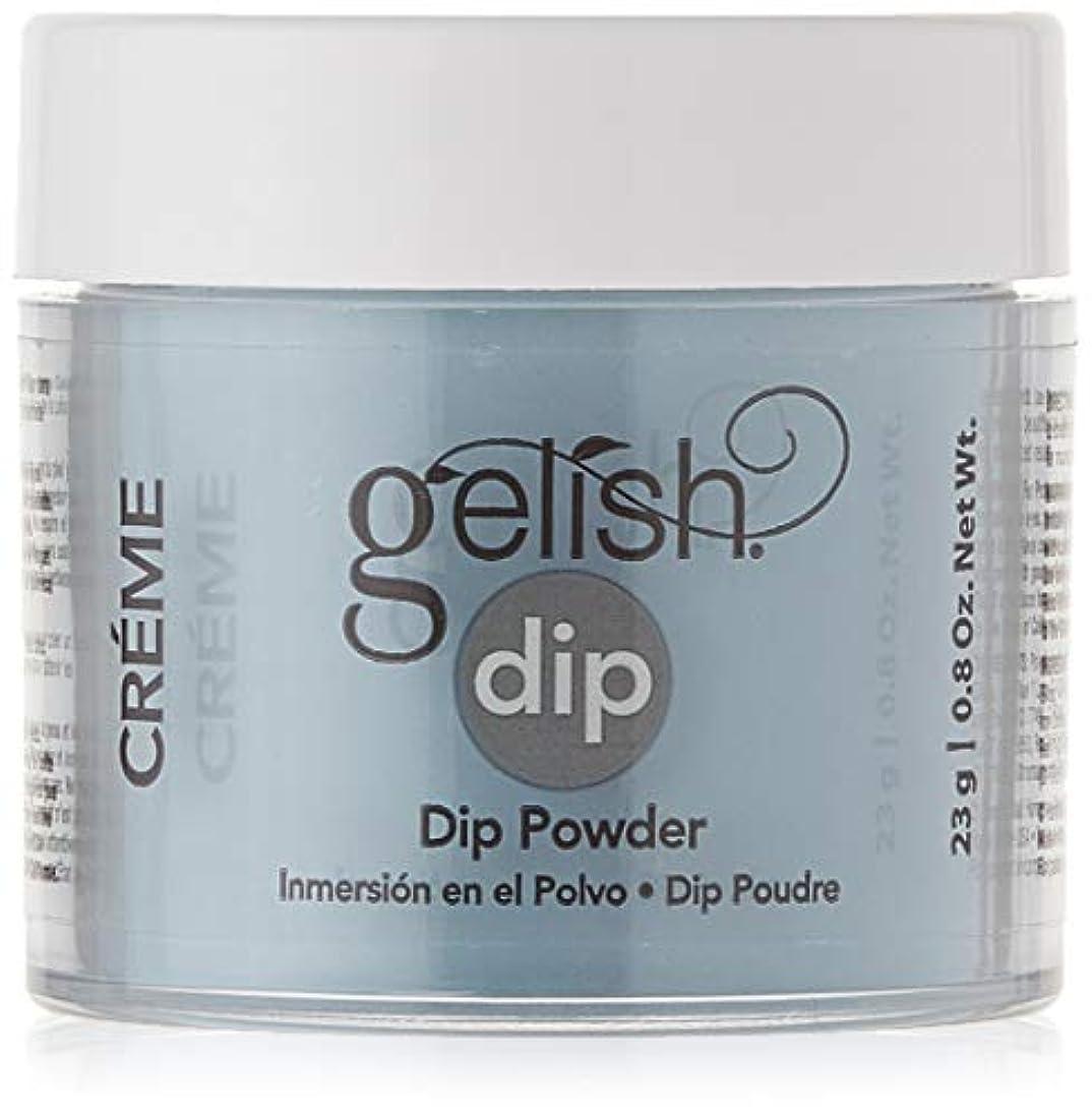 数値笑完全に乾くHarmony Gelish - Acrylic Dip Powder - My Favorite Accessory - 23g / 0.8oz