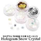 ホログラム 雪の結晶 全9種 丸ケース入り (1.クリアオーロラブルー)