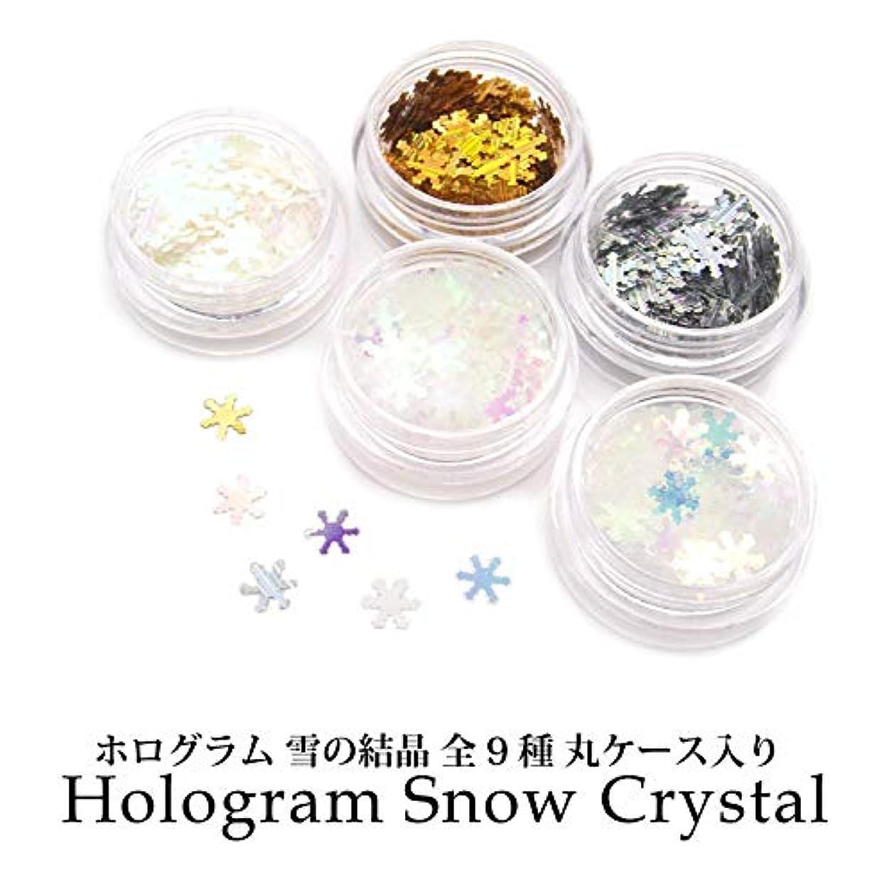 より平らなトレードメインホログラム 雪の結晶 全9種 丸ケース入り (1.クリアオーロラブルー)