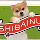 PUTITTO 柴犬 SHIBAINU [1.赤毛(のりこえ)](単品)