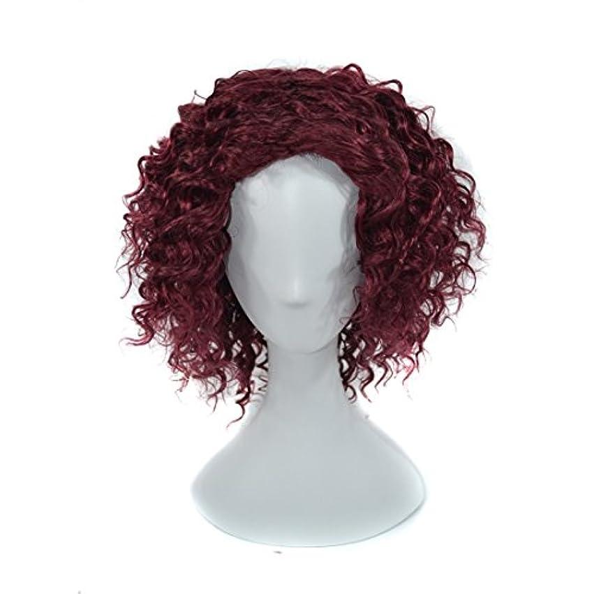 絶滅させる敬意を表する面白いYOUQIU 女性の赤ワイン用16インチヒト小カーリーヘアは220グラムかつら合成デイリーウィッグ傾斜前髪で染色カーリーウィッグことはできません (色 : Red wine)