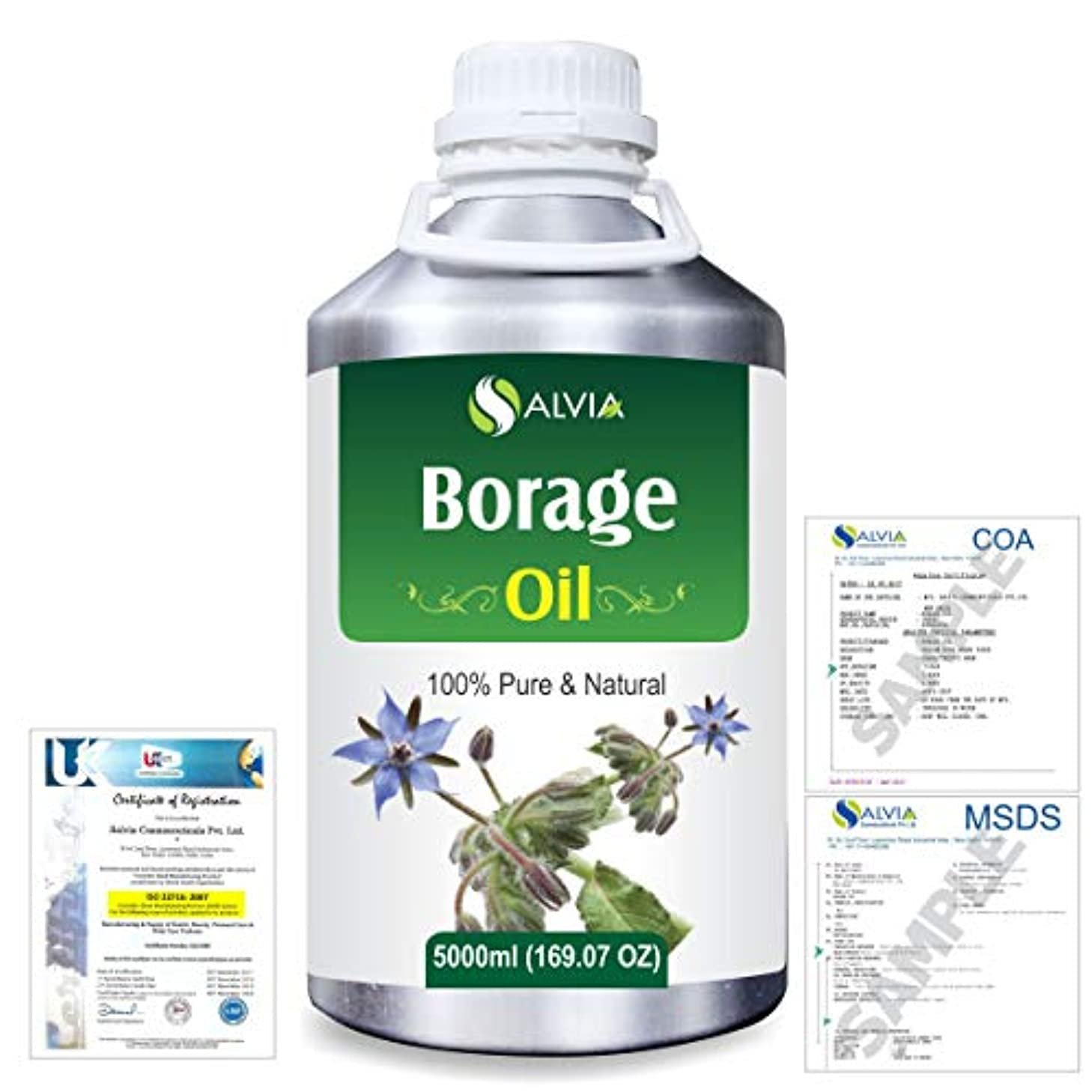 動詞くぼみ理想的にはBorage (Borago officinalis) Natural Pure Undiluted Uncut Carrier Oil 5000ml/169 fl.oz.