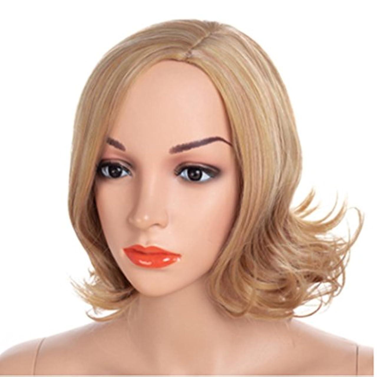 原理レール抽象YOUQIU 顔ウィッグで変更することができ黄金の髪の色とAウィッグ髪型の40センチメートル女性のかつら髪型メッシー伐採 (色 : ゴールド)
