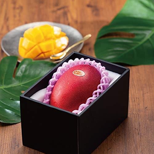 マンゴー みやざき完熟マンゴー 風のいたずら 訳あり 3L 1玉 宮崎県産 母の日 父の日 プレゼント
