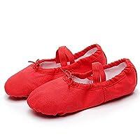 XiuZP ダンスシューズキャンバスヨガシューズキャットクローバレエシューズレザーノンスリップボトム女性の女性のための (Color : 2, Size : 38 EU)