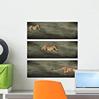 Cheetah Frames Wall Decal by Wallmonkeys Peel and Stick Graphic (18 in H x 16 in W) WM255951 [並行輸入品]