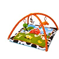 Red Kite Farm Yard Playgym by Red Kite