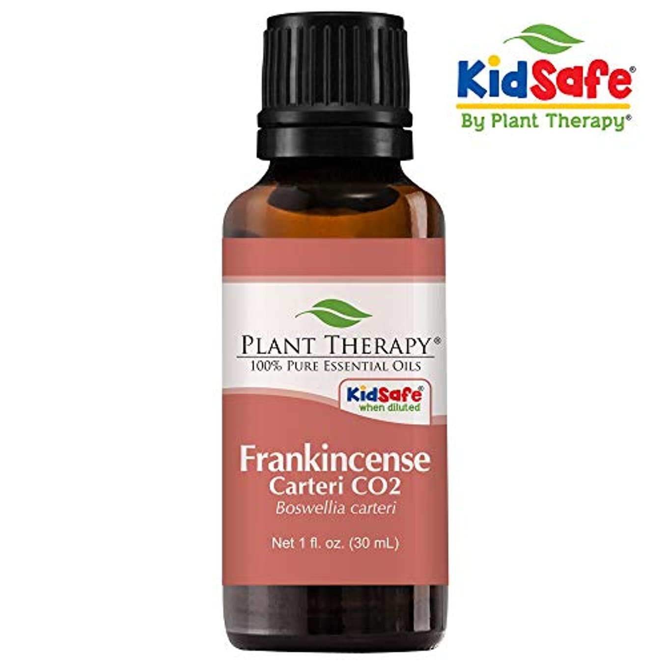ホットバリケード窒息させるフランキンセンスCarteri CO2 30 mLのエッセンシャルオイル100%ピュア、治療グレード