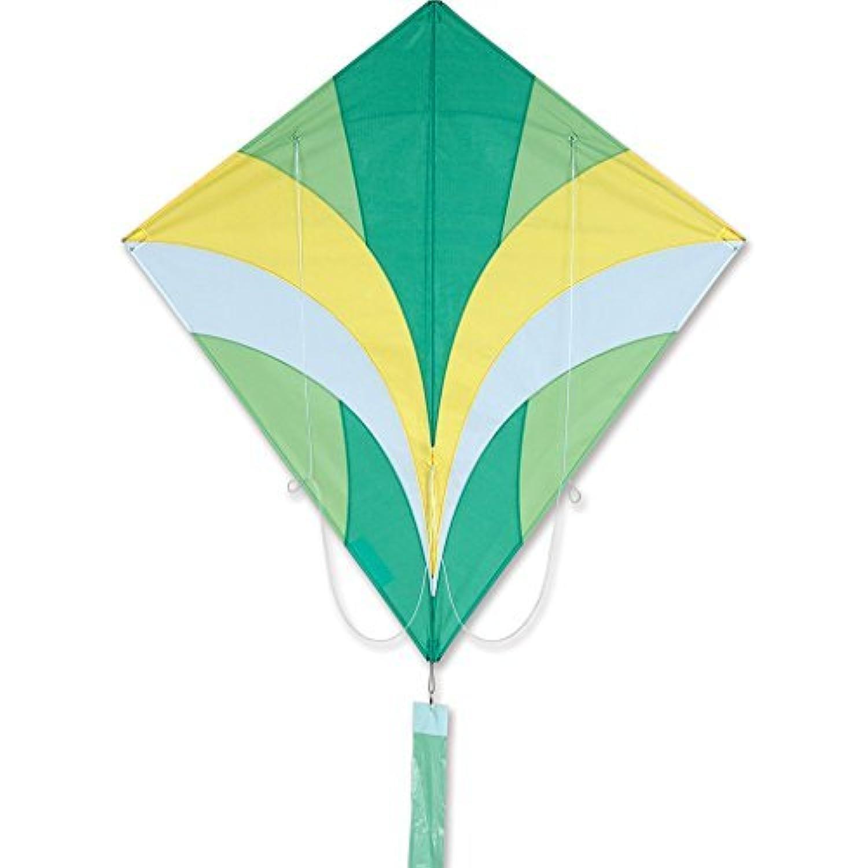 ACE Kite – グリーンby Premier Kites